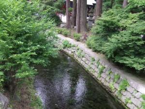 ボーイスカウト福岡第4団