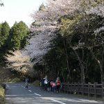 カブスカウト〜春の舎営③〜