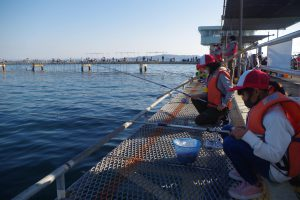 魚釣りプログラム